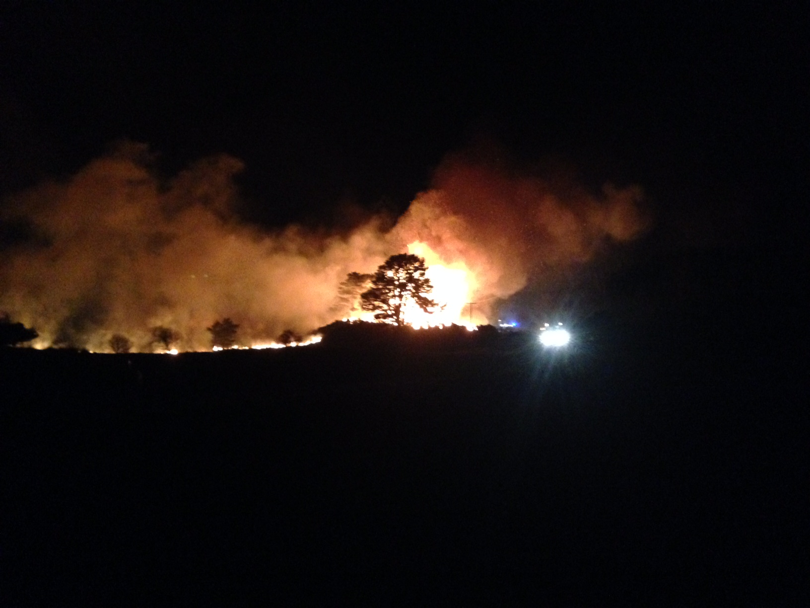 SFRS dealing with wildfire behind water treatment works, Dornoch