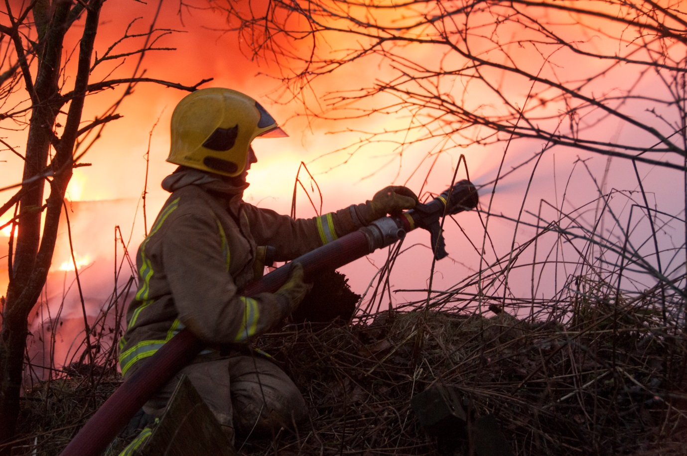 Firefighters tackled hundreds of deliberate blazes across Scotland last summer